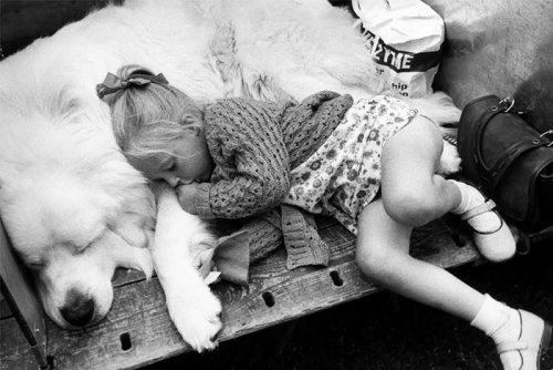 Очаровательные сонные парочки (26 фото)