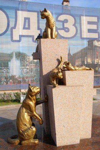 Любовь россиян к кошкам оказалась самой большой в мире (21 фото)