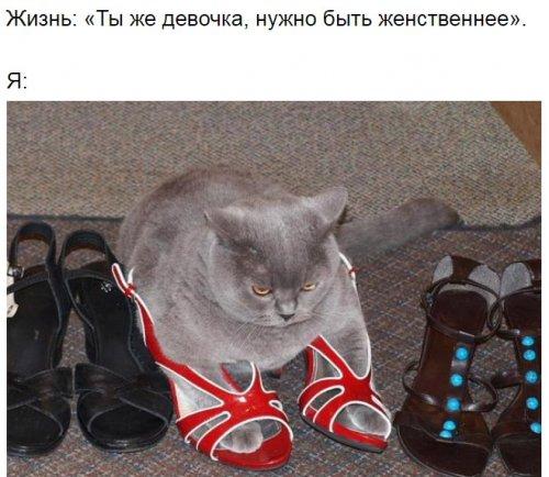 Юмор : Фото о том, что говорит мне жизнь и что делаю я (7 фото)