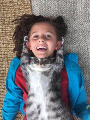 Юмор : Коты и собаки, которые жить не могут без своего человека (14 фото)