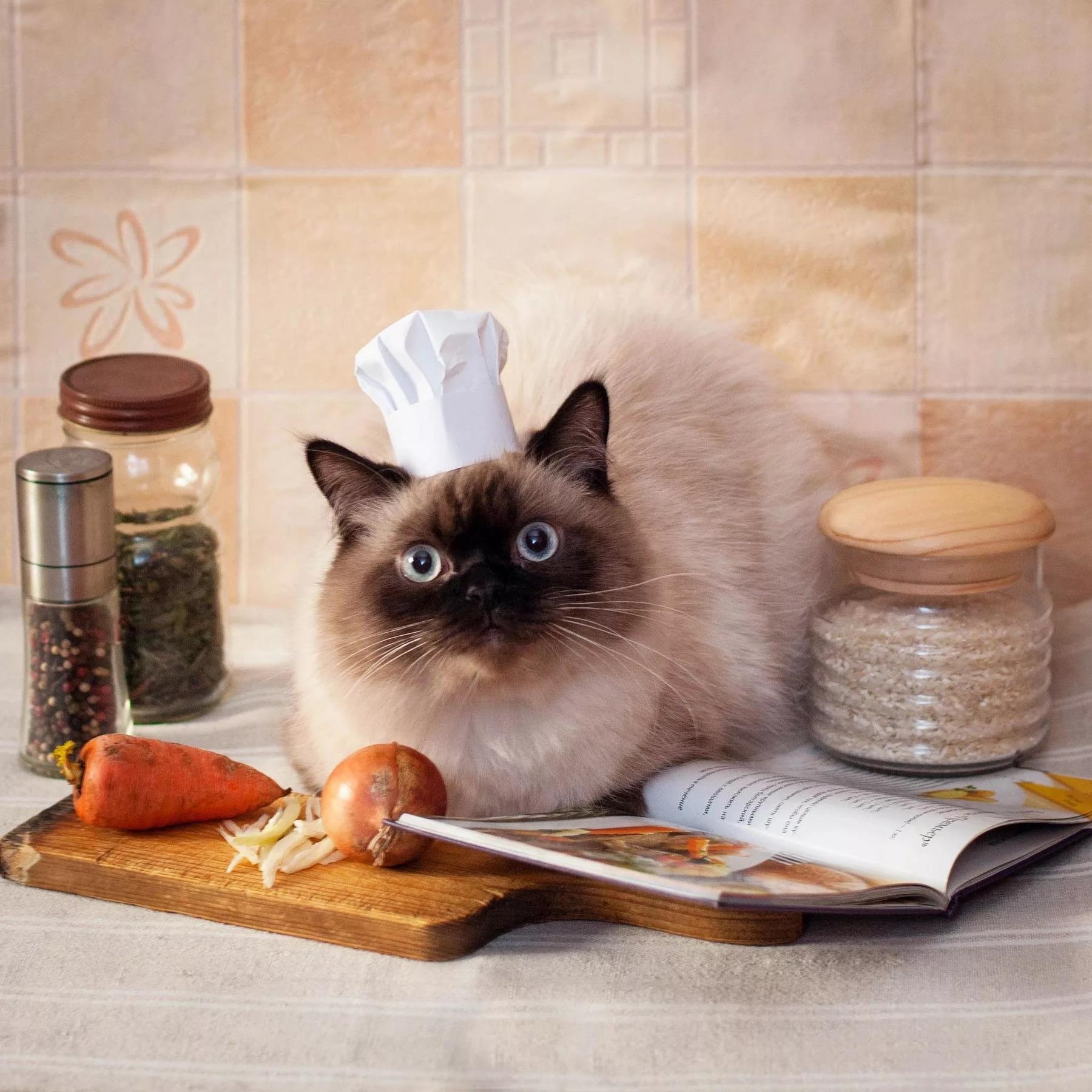 Прикольные картинки про кухню и еду