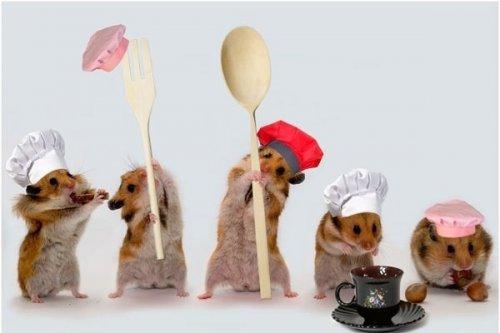 Вот они-настоящие шеф- повара! (38 фото)