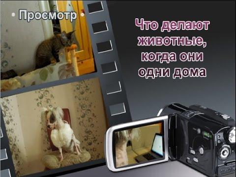 Одни дома (30 фото)
