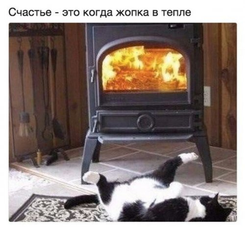 КОТОПЯТНИЦА (30 фото)