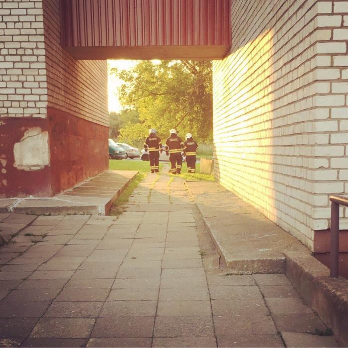 Эстония: Крошка Енот в Нарве (4 фото)