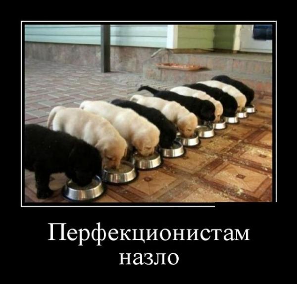 Прикольные демотиваторы (35 фото)