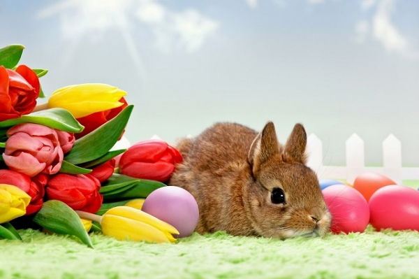 С праздником Великой Пасхи!