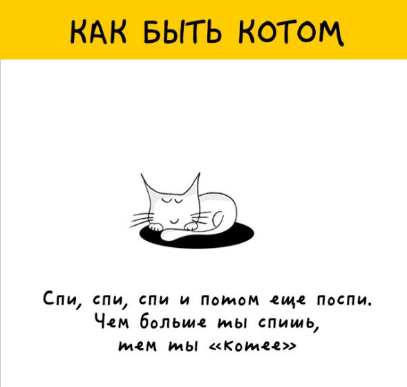 Юмор: 12 крутых картинок о том, как быть котом