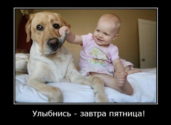 Забавные картинки (30 фото)
