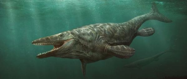 Это интересно: 5 морских чудовищ, существовавших на самом деле