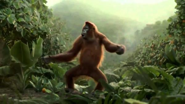 Юмор: Танцующая обезьяна