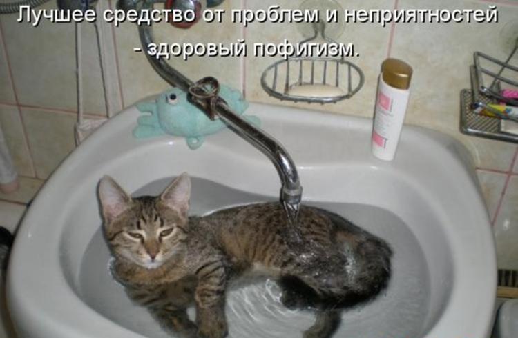 Прикольные картинки с надписями про воду какой вкусный