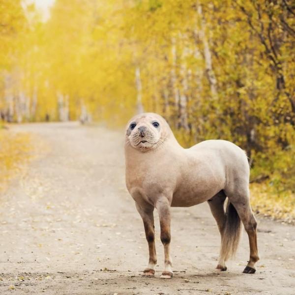 Норвежский художник творит настоящие чудеса в Photoshop ( 38 фото)