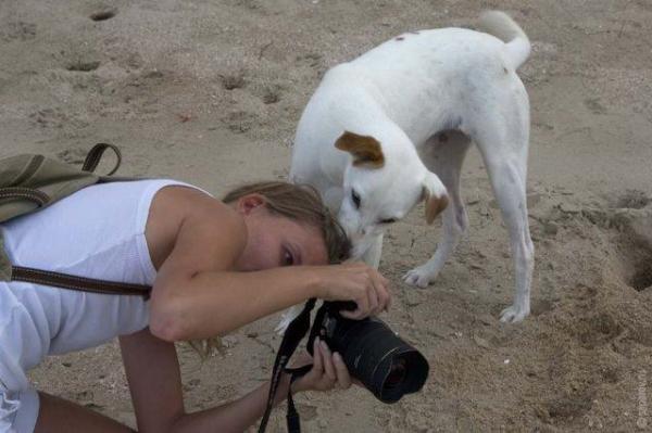 Прикольные картинки (30 фото)