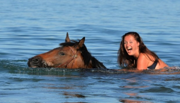 Удивительные пловцы (20 фото)