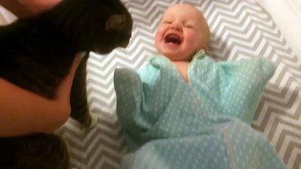 Юмор: Малыш просто без ума от своего кота