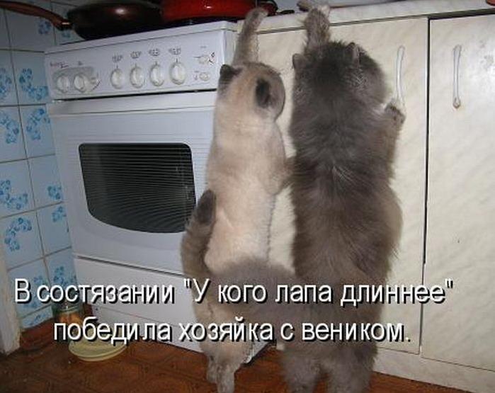 Анекдоты До Слез Про Животных