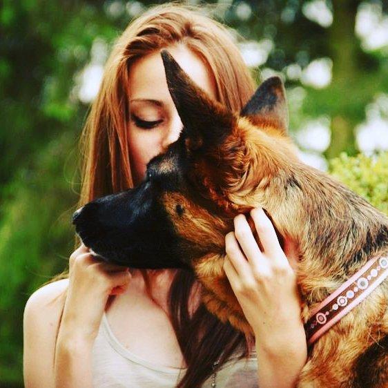Это интересно: Почему человеку проще любить собаку, чем другого человека