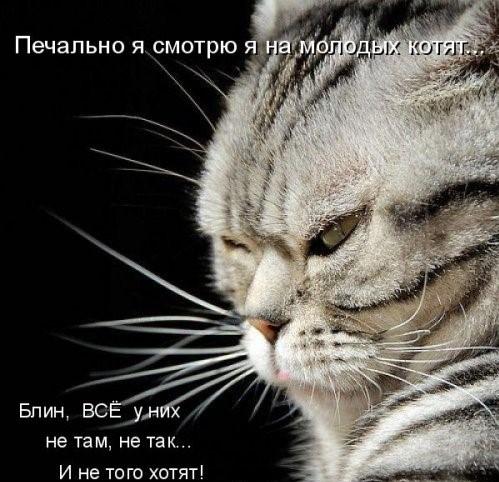 Смешные картинки (30 фото)
