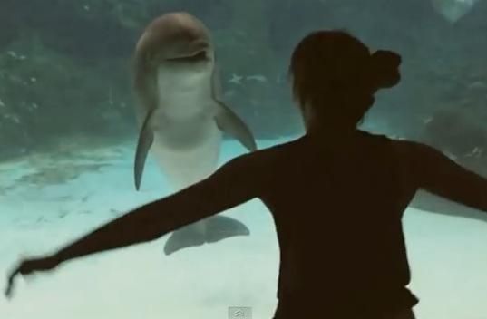 Юмор: Девочка рассмешила дельфина в аквапарке