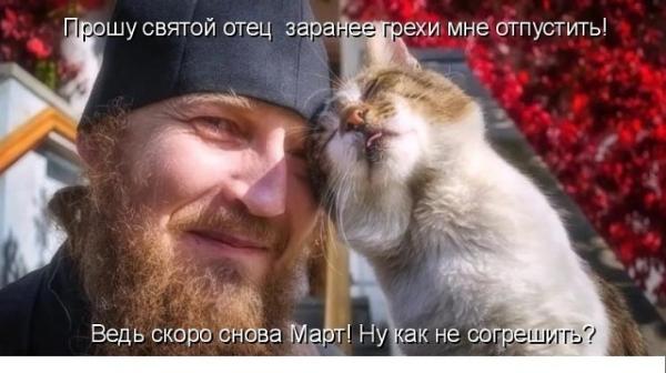 Фотографии с нотками юмора (30 фото)