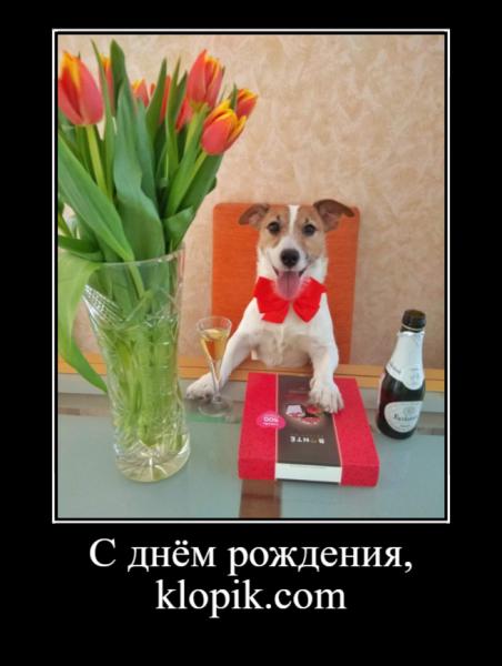 НАШЕМУ САЙТУ 10 ЛЕТ!