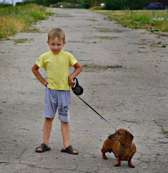 Детишки и таксы (50 фото)