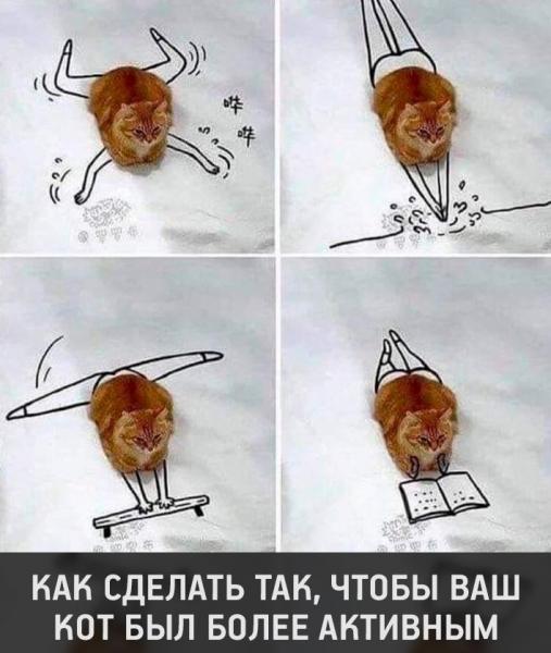 Картинки с юмором (30 фото)