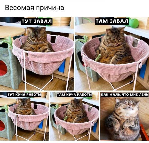 Подборка фото-приколов (35 фото)