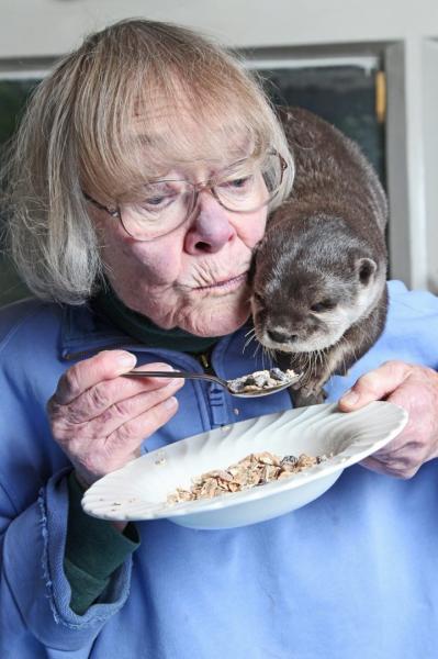 Необычные питомцы доброй бабушки (6 фото)