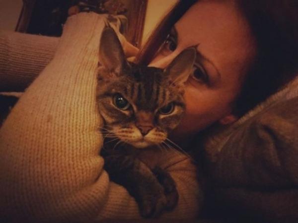 Кошка Барбара,которая постоянно выглядит сердитой (24 фото)