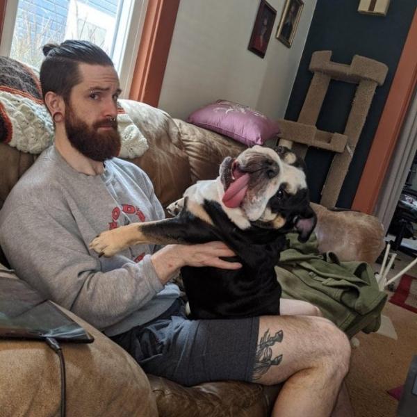 С этими собаками не соскучишься (14 фото)