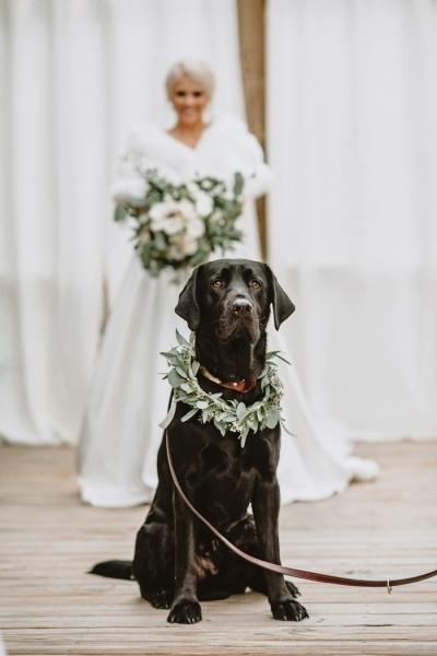 Лучший свидетель на свадьбе! (7 фото)
