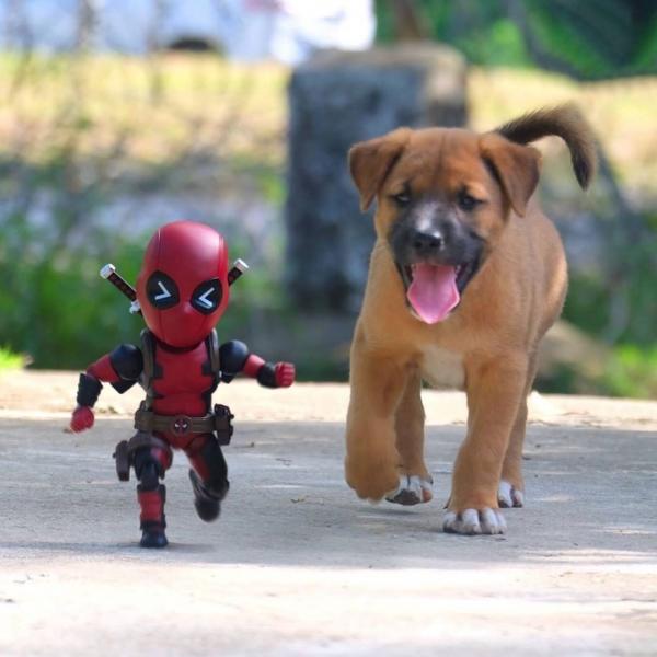 Человек-паук и его удивительные друзья (6 фото)