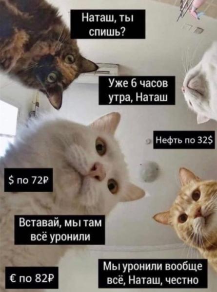 Самый популярный мем весны 2020: «Наташ, вставай, мы всё уронили!» в разных вариациях