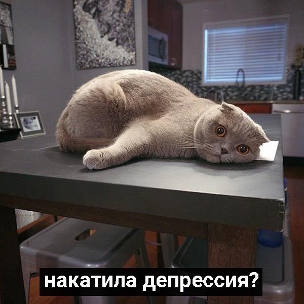 Как справляться со скукой. Советы профессионалов (9 фото)