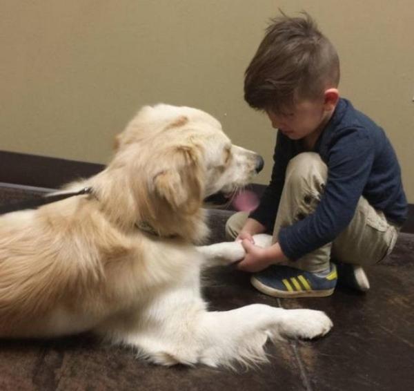Дети и животные просто созданы друг для друга (15 фото)