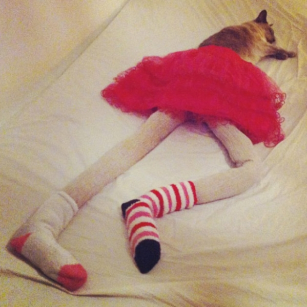 Если бы кошки были людьми… (21 фото)