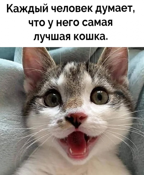 Пост хорошего настроения! (30 фото)