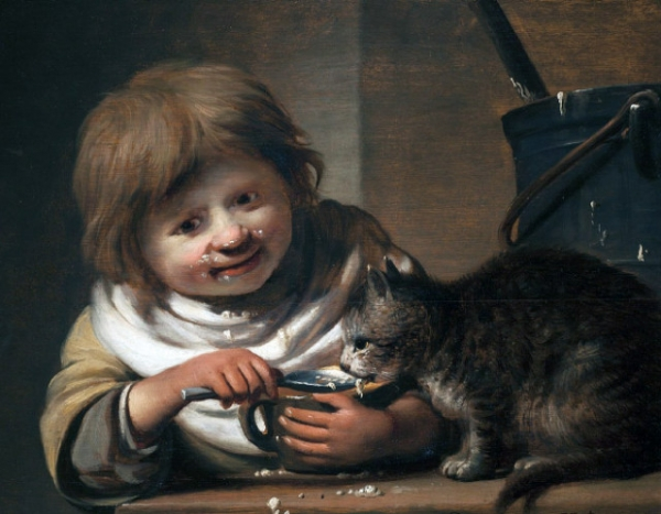 Мы перестали любить кошек! Ведь раньше их кормили с ложечки!  Кошки