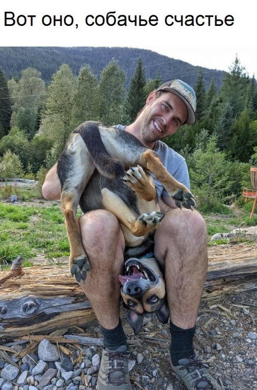 Фотографии с животными для хорошего настроения  Всякая всячина